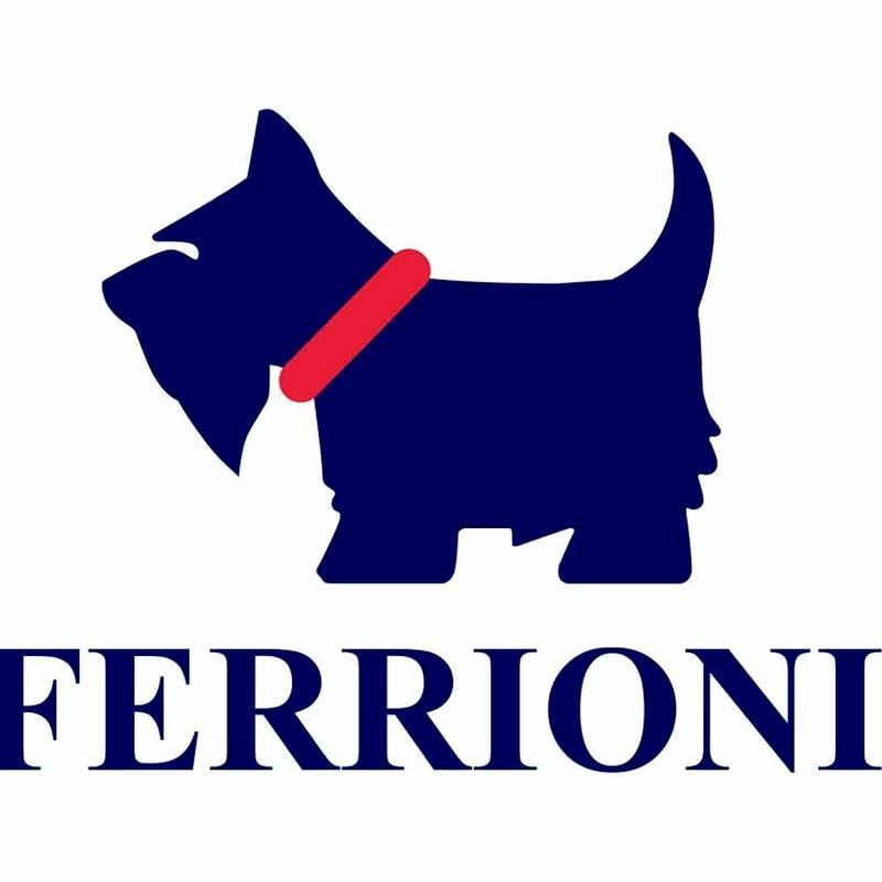Ferrioni